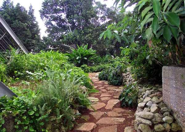 Variados festejos por el aniversario 50 del Jardín Botánico Nacional