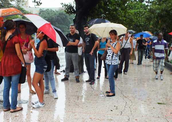 Fila de paraguas que sobresalen por sus diferentes motivos, tamaños y colores. Foto Abel Rojas