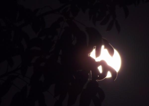 Belleza y encanto natural de la luna. Foto: Abel Rojas