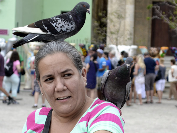 Un pequeño espacio para estar entre palomas. Foto Abel Rojas Barallobre