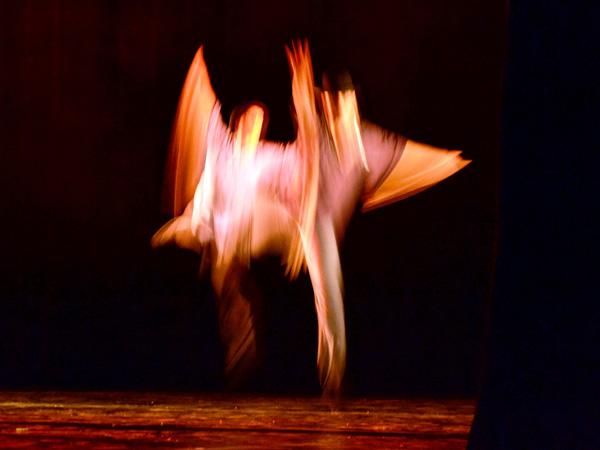 Fotograf�a: entre la imagen est�tica y en movimiento