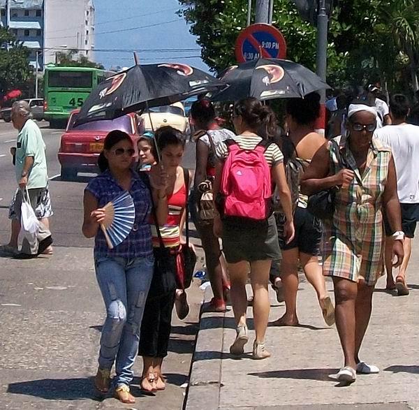 Las sombrillas toman La Habana. Foto Abel Rojas