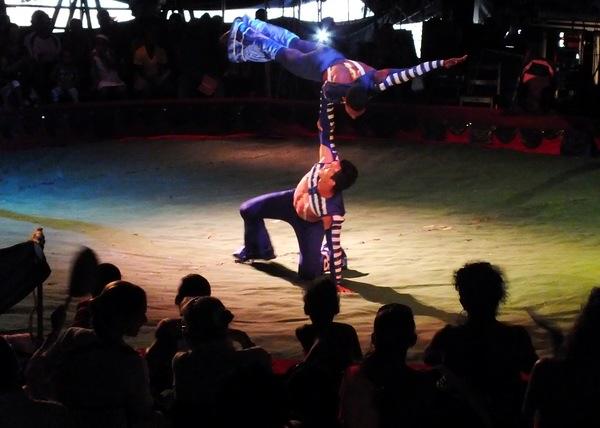 El Verano 2014 en Cuba cuenta con la activa participación del Circo Nacional de Cuba; que hasta el momento ha ofrecido al pueblo cubano una serie de espectáculos artísticos que incluyó a acróbatas, payasos, magos, adiestradores de animales y otros artistas. Foto Abel Rojas Barallobre