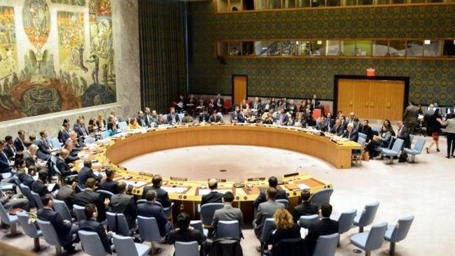 Presidirá Bolivia el Consejo de Seguridad de las Naciones Unidas