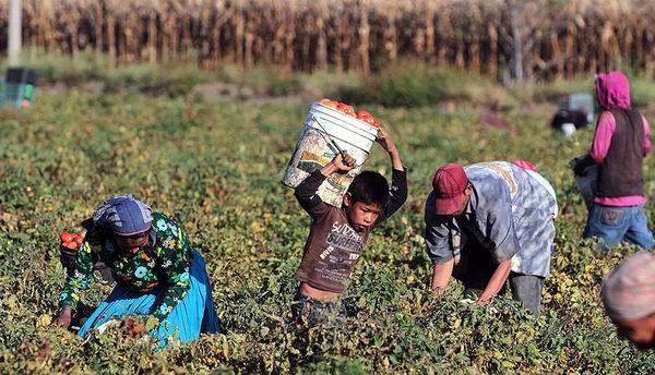 Cuba ratifica Convenio sobre eliminaci�n del trabajo infantil