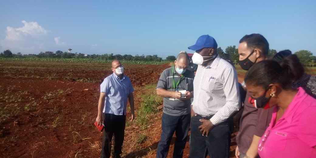 Chequea vicepresidente cubano producción de alimentos y preparativos de zafra en Artemisa
