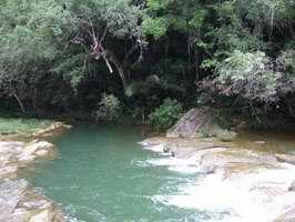 Península de Guanahacabibes, La reserva forestal más grande de Cuba