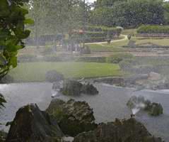 Jardín Botánico Nacional: Jardín japonés