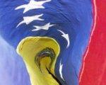 Fuerzas Armadas de Venezuela atentas a generar y armar escenarios de paz